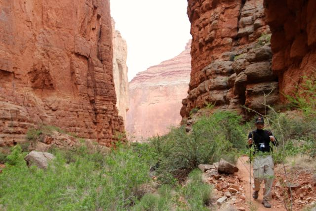 Explore beautiful scenery with Grand Canyon Hikes